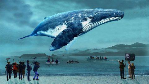 『おクジラさま ふたつの正義の物語』